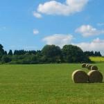 straw-bales-171614_640