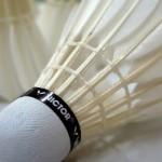 badminton-659910_640