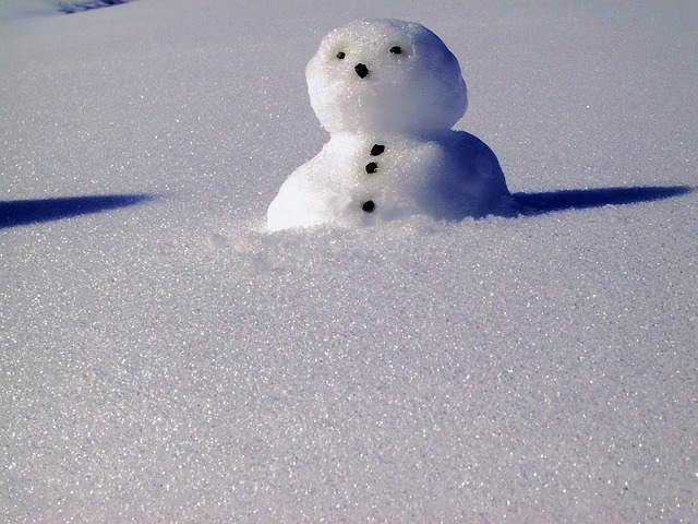snow-974875_640