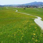 austria-70052_640
