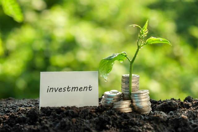 投資でお金を育てる